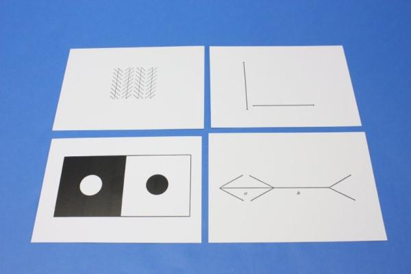 Optische Täuschung und physiologisches Sehen
