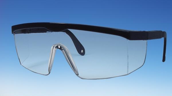 Panorama-Vollsichtbrille (Schutzbrille), blau, mit Kunststoffgläsern, DIN P